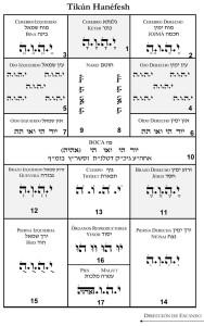 tikun_hanefesh_chart_